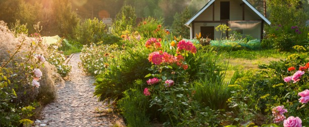 Sustainable Gardening for Spring